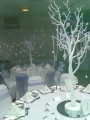 Simple White manzanita trees available in any package or £25 per table