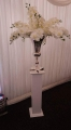Orchid display. Table Centrepiece or aisle decor